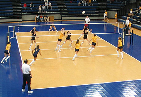 find_by_sport-volleyball-indoor_synthetics-response.jpg